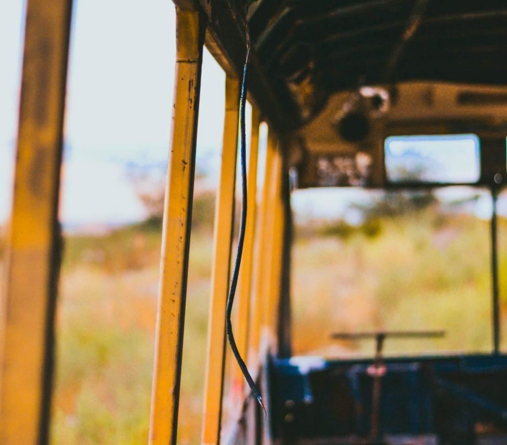 bus lautaro-andreani-208087